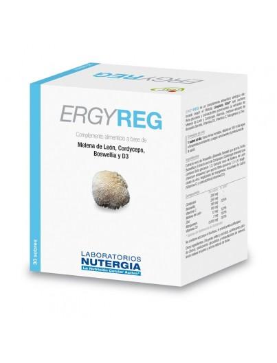 ERGY REG 30 SOBRES (NUTERGIA)