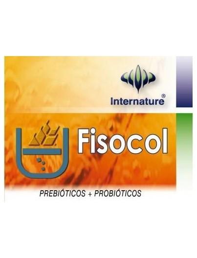 INTERNATURE FISOCOL PLUS 60 CAPSULAS