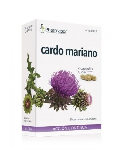 CARDO MARIANO 400 MG 60 CAPSULAS